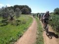 Bikeferien_Toscana_2016016