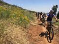 Bikeferien_Süedafrika_2018133
