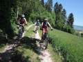 Privat-Bike-Tour-Bregg_10664