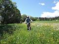 Privat-Bike-Tour-Bregg_10666